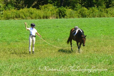 Natural Horsemanship Crossing Water